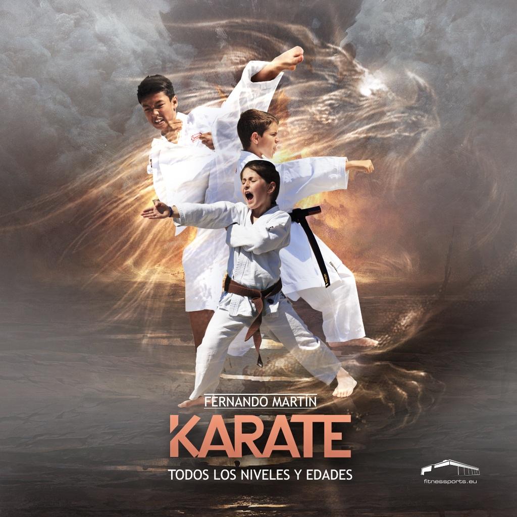 Karate Escuela Fitness Sports Valle las Cañas PerfectPixel Publicidad Box
