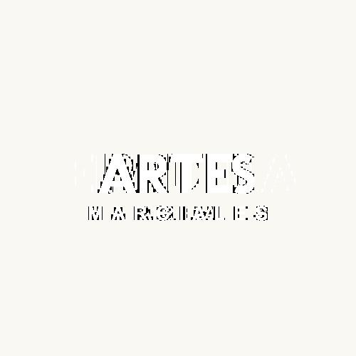 Artes marciales Area